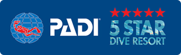 5-Star PADI Dive Resort